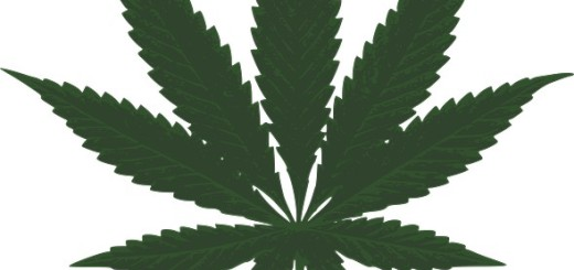 Cannabis aus eigenem Anbau für Schwerstkranke