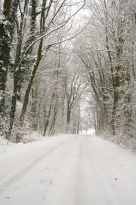 Oh weh, der Schnee!