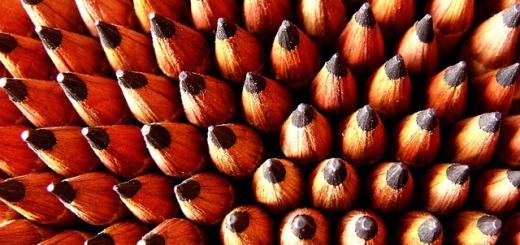 Zweckentfremdung - Die Königsklasse der Kreativität