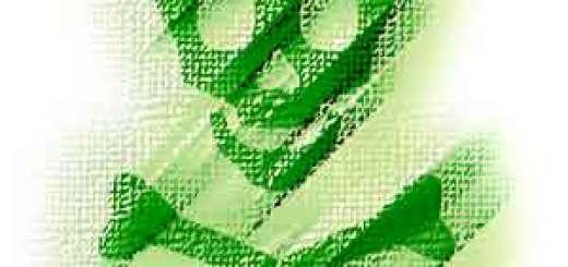 Giftiger Kräutertee