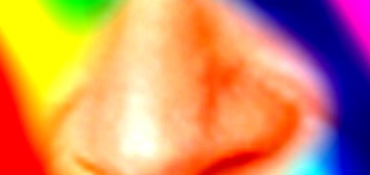 Zeigt her Eure Nasen