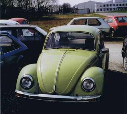 Geliebter Käfer