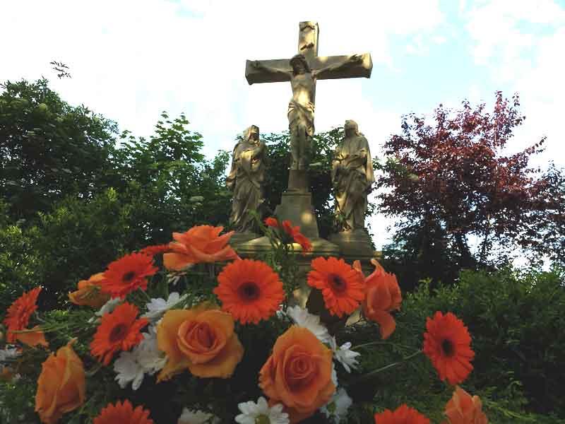 Probleme mit dem Kreuz
